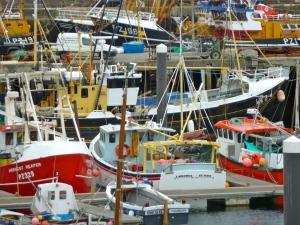 FC58 Boats Newlyn_2